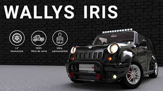 Wallys Car - IRIS