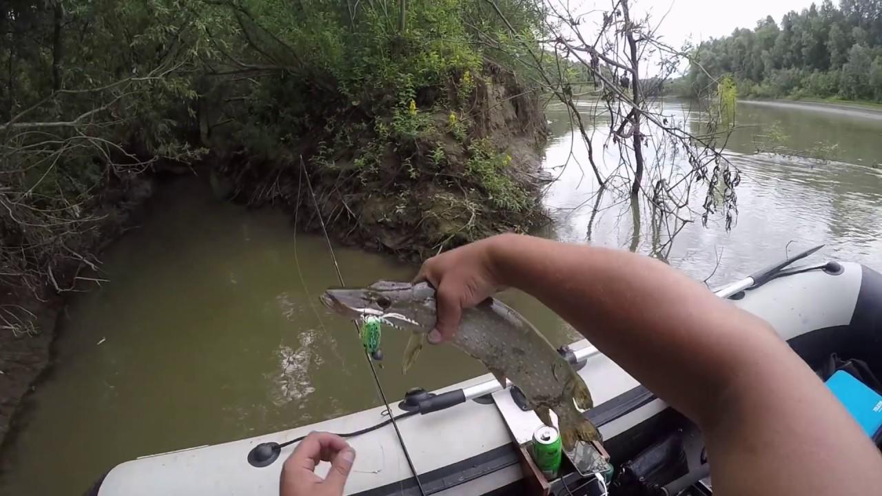 обь рыбалка протока