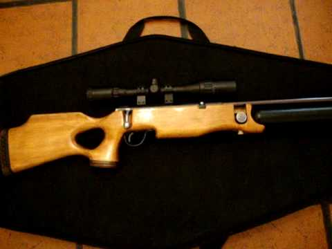 Shark .22 PCP air rifle