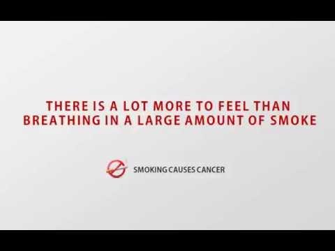 World No Tobacco Day  31st May 2016