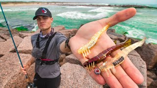 this shrimp lure CATCHES multispecies catch and cook