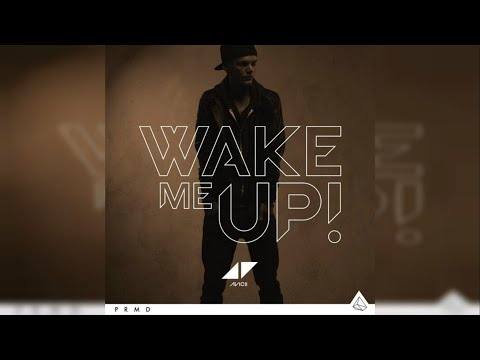 Avicii - Wake Me Up (Instrumental)