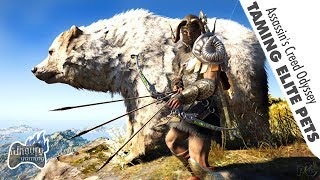 Assassin's Creed Odyssey: Taming Elite Animals for Pet (Unarmed)