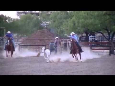 Team Roping Head Horse For Sale In South Texas Youtube