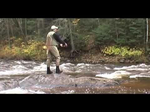 Fly Fishing Wisconsin Steelhead (Rainbow Trout)