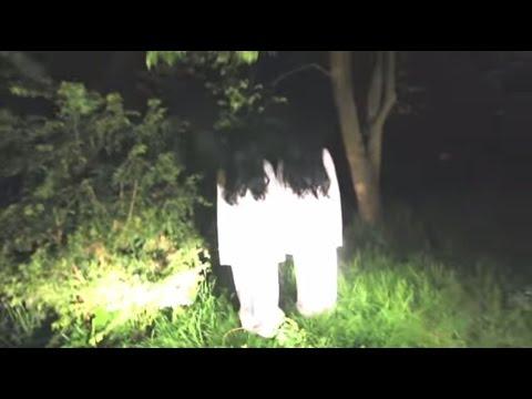Top 5 Ghost Pranks - Samara Morgan Pranks - Crazy Horror Pranks video