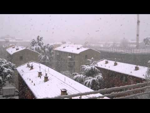 Neve Bologna 23/02/2013