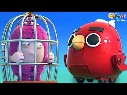 Pajaritos - Oddbods   Dibujos Animados Graciosos Para Niños