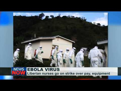 More cases of Ebola spreading in Europe unavoidable