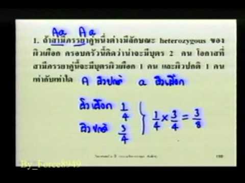 วิทยาศาสตร์ ม 3 ความผิดปกติทางพันธุกรรม สาธิต ม รามฯ Force8949 8 Of 9