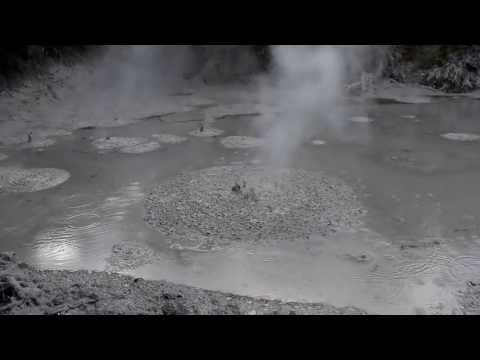 Mud Pools at Wai-o-tapu