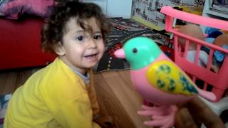 Elanur is playing with very nice toys -  cars and toys - Funny kids video - Baby toys
