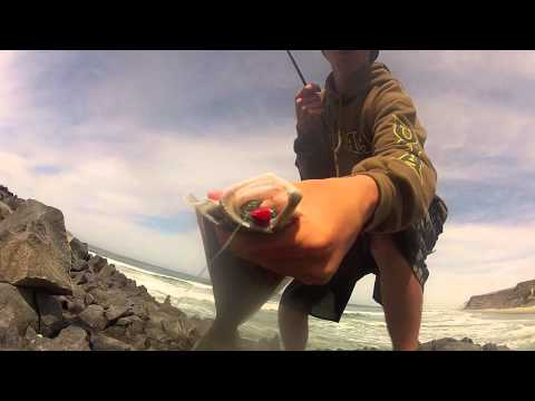 SD BASS CREW ADVENTURES : Scorpion Bay, Mexico - Surfing and Surf Fishing