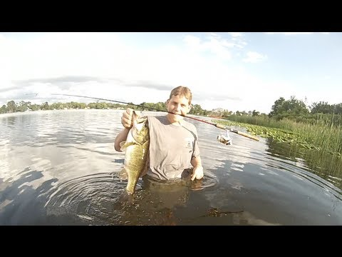 Big bass Wade Fishing at Lake Kathryn, FL