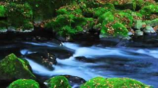 Pavane Op 50 Gabriel Fauré By Steve Erquiaga