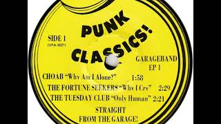 V/A Punk Classics EP VOL 1 (Garage Rock 60's)