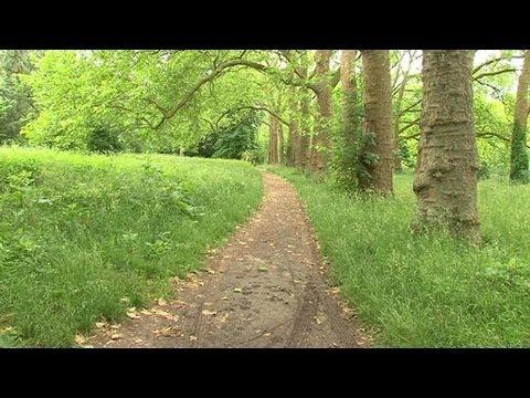 image vidéo Bois de Vincennes : un nouveau tronc humain découvert