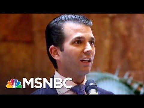 Democrats Want More Answers From Donald Trump Jr. On Russia | The 11th Hour | MSNBC