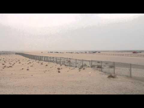Kuwait Camel Race, January 2013