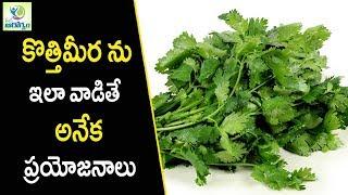 Coriander Leaves Benefits - Health Tips in Telugu    Mana Arogyam