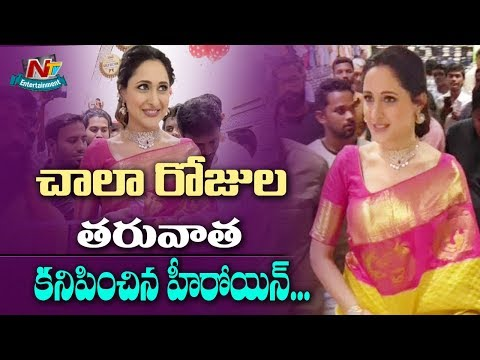 Pragya Jaiswal Launches J C Brothers Shopping Mall at Zaheerabad | NTV Entertainment