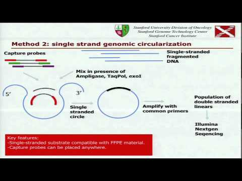 Massively Parallel Validation of Cancer Mutations and Other Variants... - Georges Natsoulis