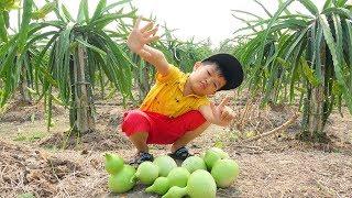 Bé Hái Bầu Hồ Lô Và Đu Đủ Khám Phá Ruộng Vườn - Learn with Baby Cut Fruit and Vegetables Real Life