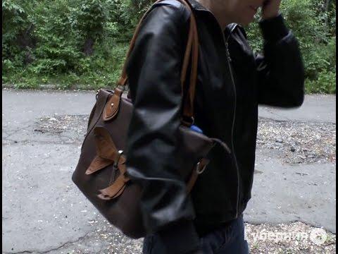 Стаффордширский терьер защитил хозяйку от грабителя в Комсомольске-на-Амуре.MestoproTV