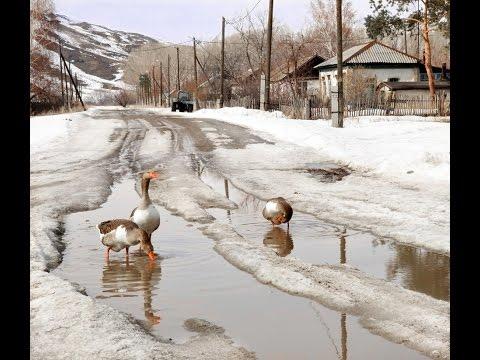Зима не хочет уходить/Огромный минус жизни в деревне