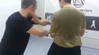 WING CHUN NOVI SAD-switching elbow DRILL