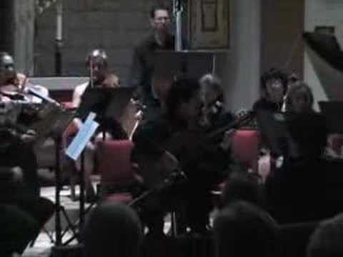 Mauro Giuliani Guitar Concerto Op. 30 1st mvt. Allegro Maest