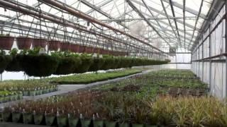 Landscape Center | Waukesha, WI – Bluemel's Garden & Landscaping Center