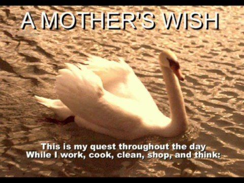 Listen to a Mother's Voice - A Mother's Wish