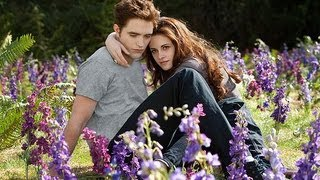 The Twilight Saga: Breaking Dawn � Part 2 - The Twilight Saga: Breaking Dawn Part 2 - Movie Review