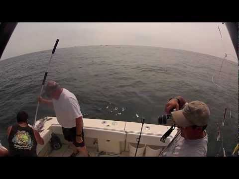 New Jersey Tuna Fishing 2