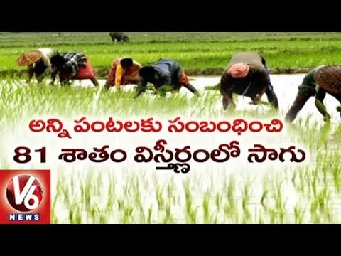 Special Report On Kharif Season Cultivated Area In Telangana State | V6 News