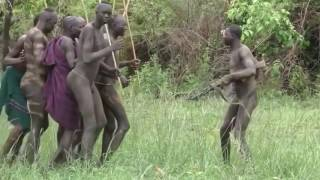 African Hamar Tribes life   Rituals of Hamar Tribe at Ethiopia