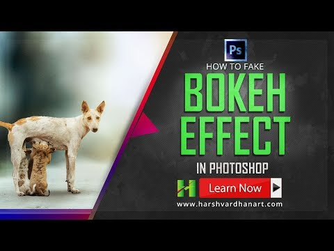 How to Fake Bokeh Blur Background Effect in Photoshop-Tutorial for Beginners