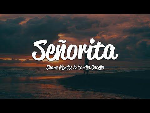 Download Lagu  Shawn Mendes, Camila Cabello - Señorita s Mp3 Free