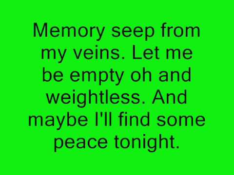 Sarah Mclachlin- In The Arms Of An Angel Lyrics video
