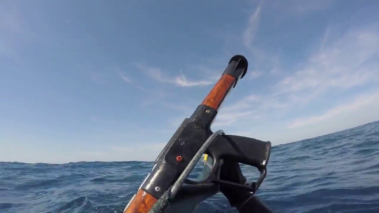 Why You Should Always Go Scuba Diving With A Pointy Stick