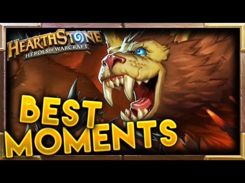 Hearthstone | Best Moments #64