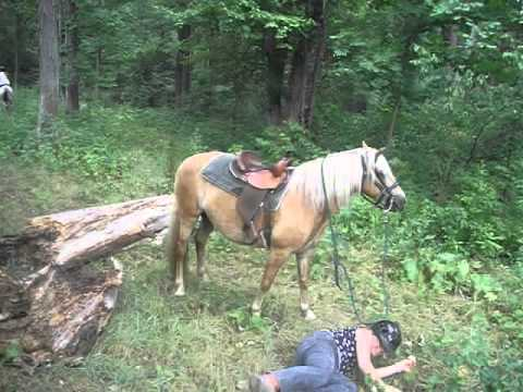 Girl Falls Off Horse (Funny)