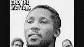 Watch Toots  The Maytals In The Dark video