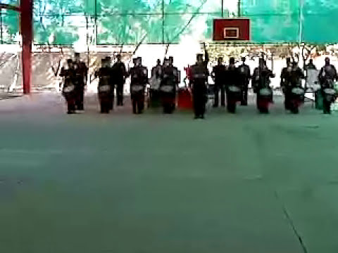 HALCONES DORADOS! SECUNDARIA Nº 11