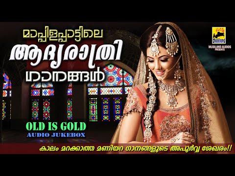 മാപ്പിളപ്പാട്ടിലെ ആദ്യരാത്രി ഗാനങ്ങൾ   Mappila Pattukal Old Is Gold   Malayalam Mappila Songs