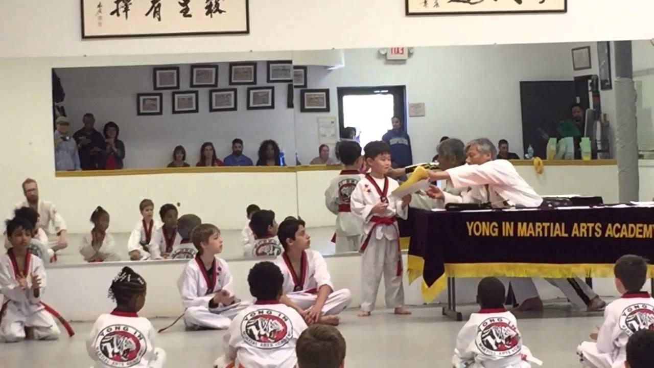 taekwondo black belt essays taekwondo black belt essay