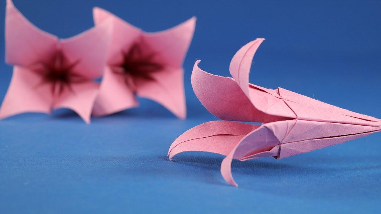 Prison Break Origami Blume 1986728 114searchfo