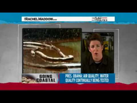BP Oil Spill: Riki Ott Toxicologist MSNBC Rachel Maddow