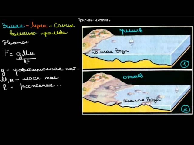 Карта Приливов И Отливов Петропавловск Камчатский